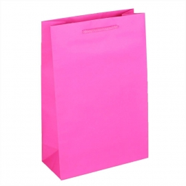 Recycled Pink Paper Bags with Rope Handles
