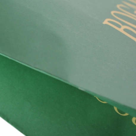 Varnished Green Recycled Rope Handle Paper Bags - Ref. Bogart