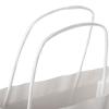 Printed Recycled Twisted Handle Paper Bag Ref. NHS Careers