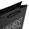 Gloss Laminated Paper Carrier Bag – Ref. Regent Street Cinema