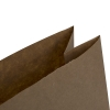 Brown Kraft Paper Bag Ref. Win Naturally