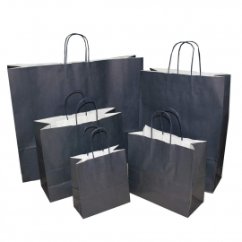 Navy Paper Bags With Twisted Handles