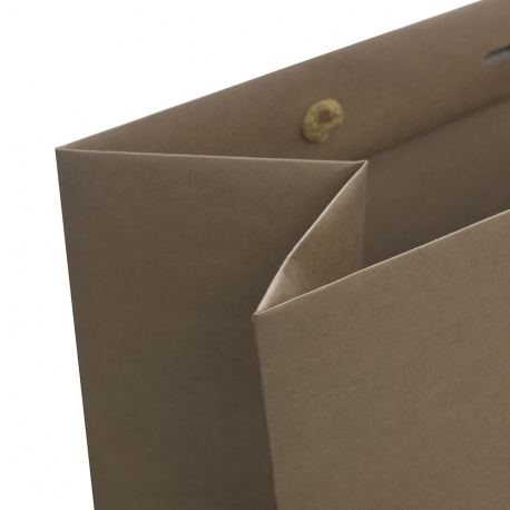 250x Uncoated Kraft Paper bags (MID) - The Restory