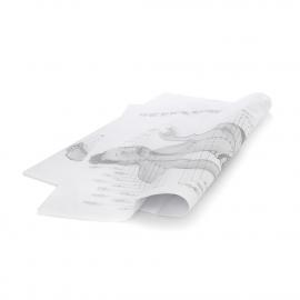 Printed Tissue Paper Ref. Bespoke Design