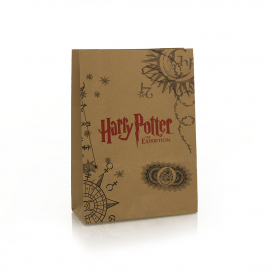 Printed Brown Handleless Paper Bags Ref Harry Potter