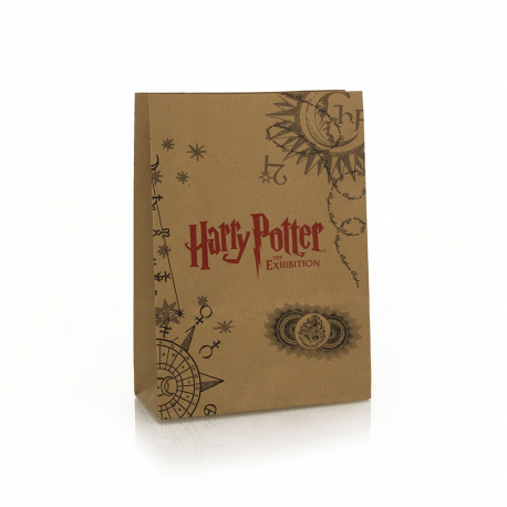 Printed Brown Handleless Paper Bags – Ref. Harry Potter