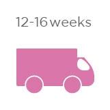 12-16 Weeks