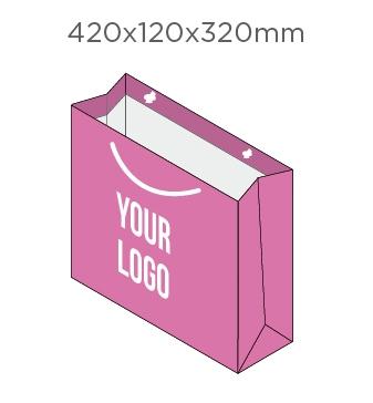 420x120x320mm
